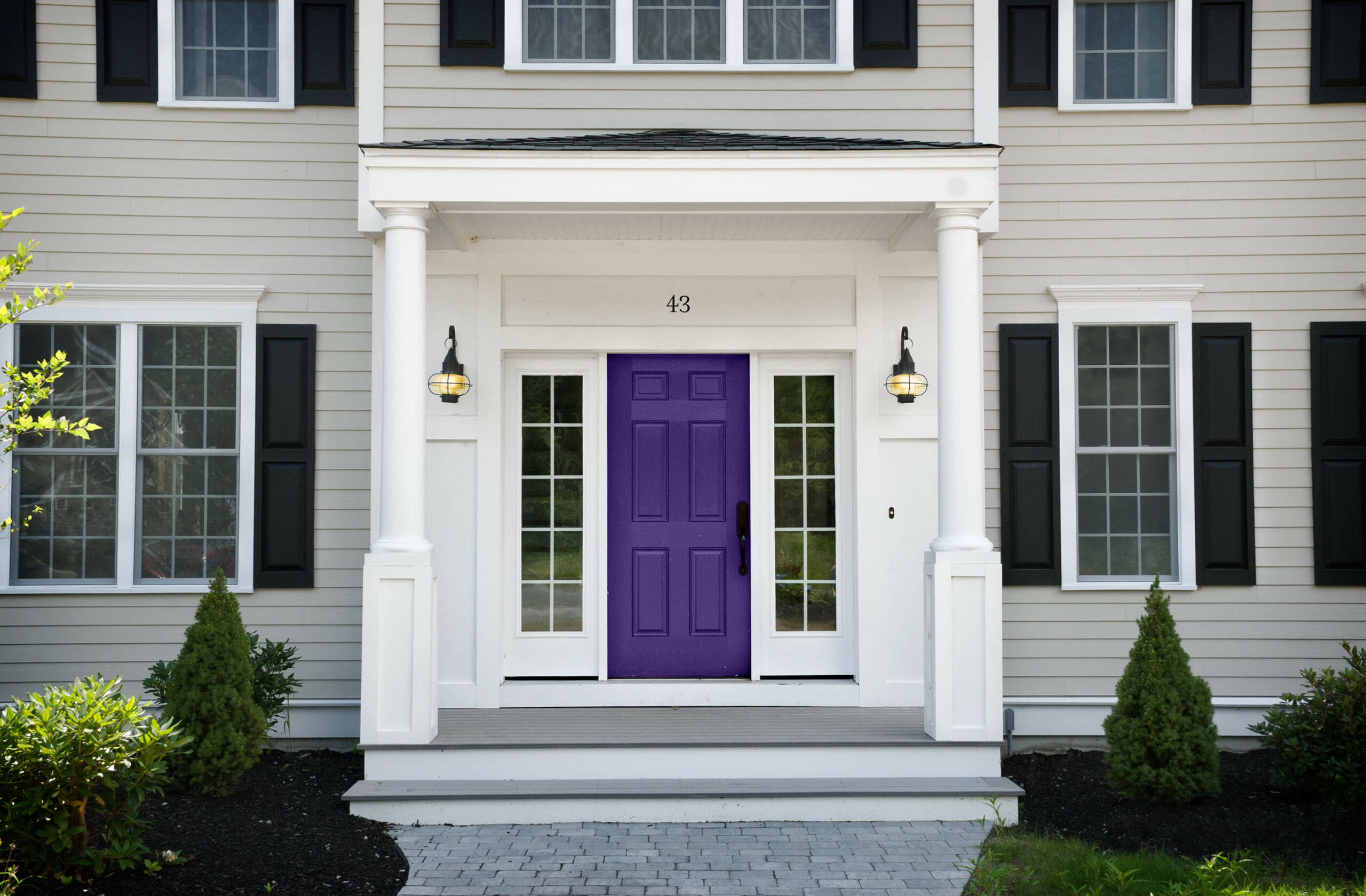 Photo of Masonite 6 panel purple door