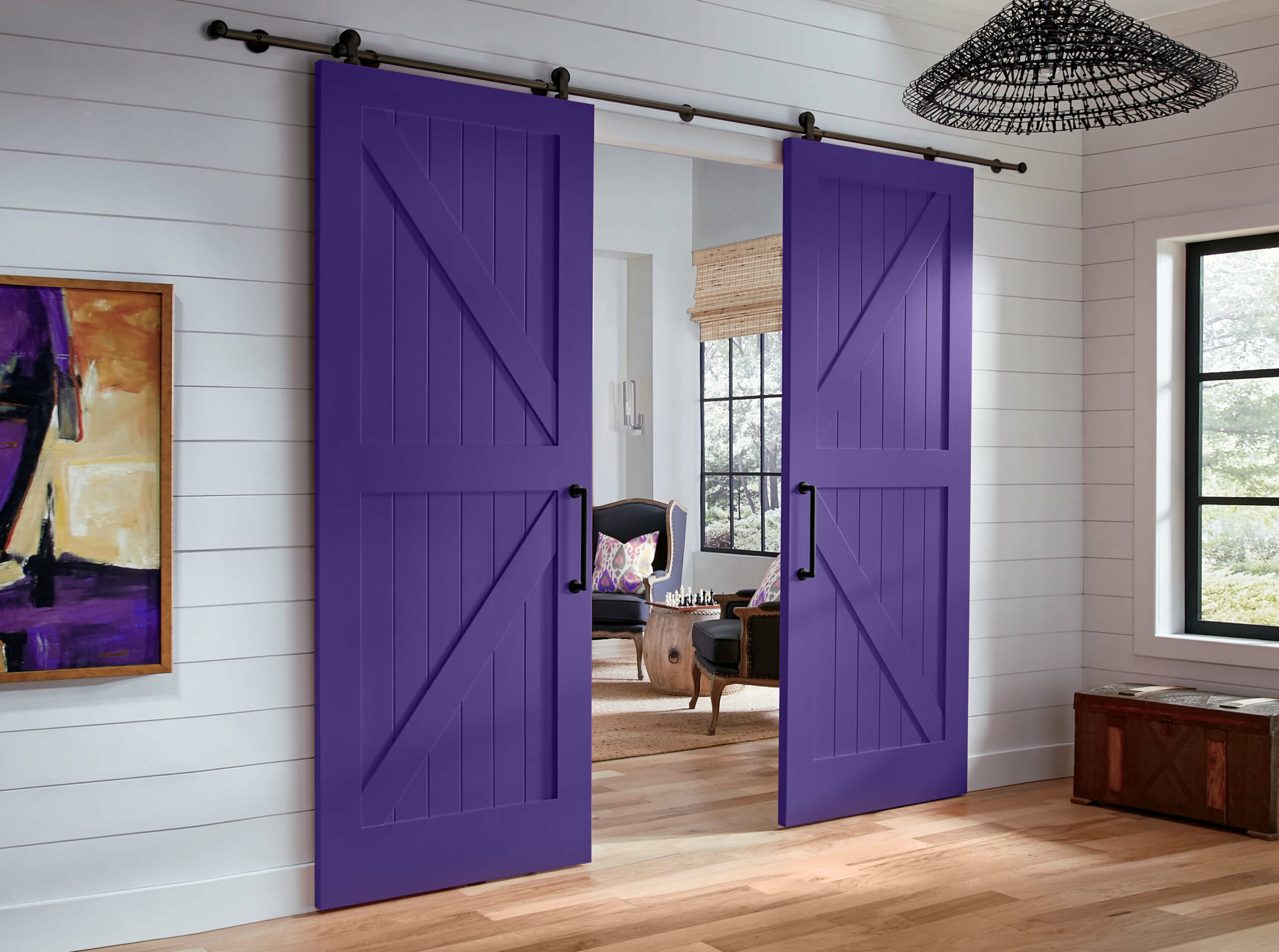Photo of TruStile purple barn doors